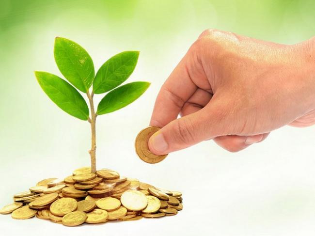 На відновлення екології  краю суб'єкти господарювання Рівненщини сплатили майже 19 мільйонів гривень
