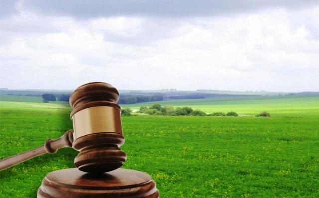 За результатами аукціону, надходження до бюджетів місцевих рад Гощанщини склали 748,8 тисяч гривень щорічно