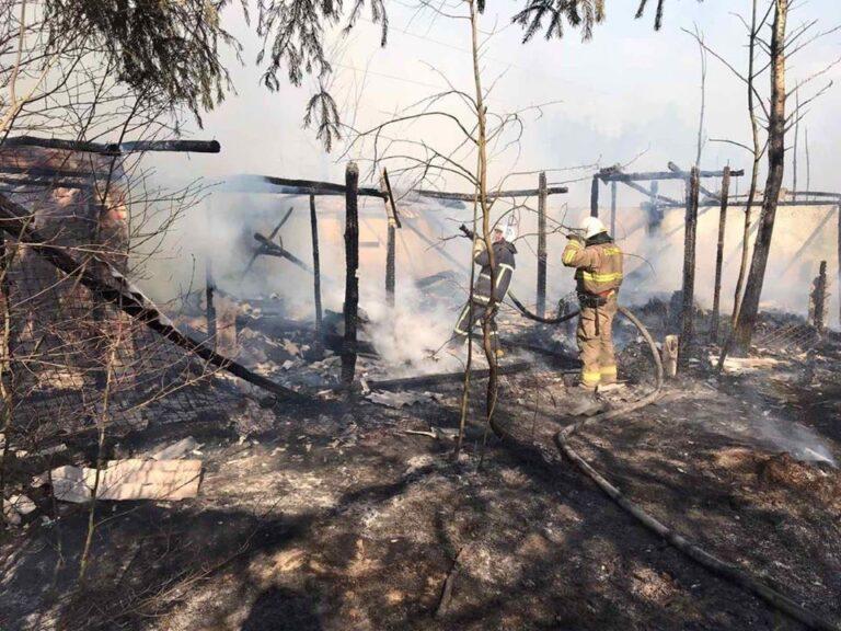 В Дубровиці пожежу гасили рятувальники спільно з лісовою охороною