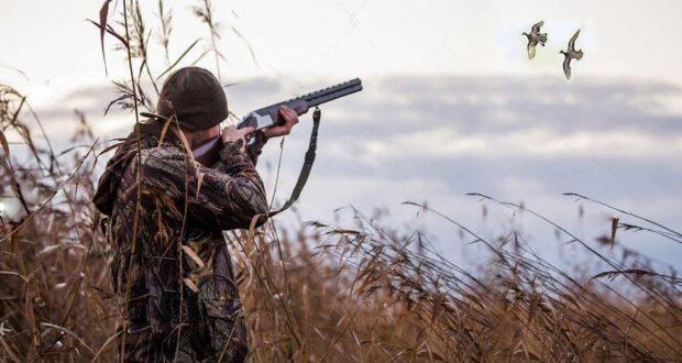 З 8 серпня на Рівненщині розпочнеться сезон полювання на пернату ...