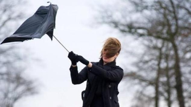 Синоптики попереджають про сильний вітер на Рівненщині