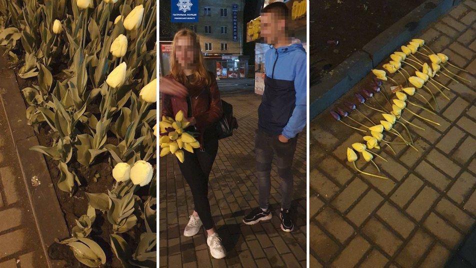 Проти 20-річного хлопця, який із клумби у центрі Рівного викрав майже 40 тюльпанів, відкрили кримінальне провадження