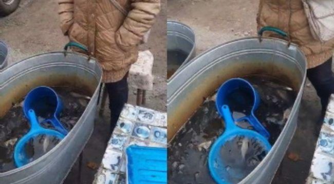 На Рівненщині оштрафували двох людей за незаконний продаж риби