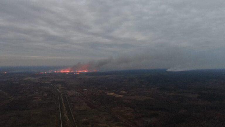 На Рівненщині на кордоні з Білоруссю масштабна пожежа (+ФОТО)